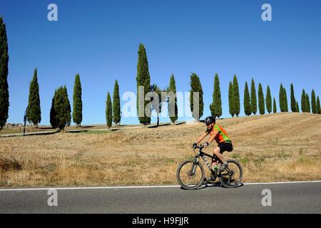 Italie, Toscane, crete senesi, road et de cyprès, à vélo Banque D'Images