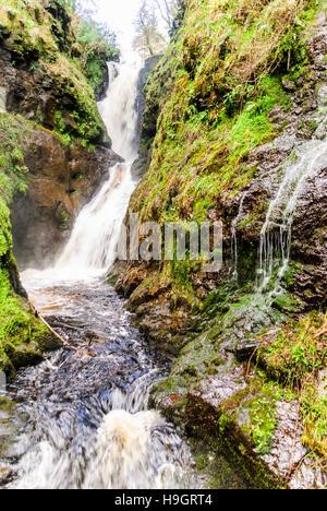 Cascades de Glenariff Forest Park, l'un des sept Les Glens d'Antrim, comté d'Antrim, en Irlande du Nord Banque D'Images
