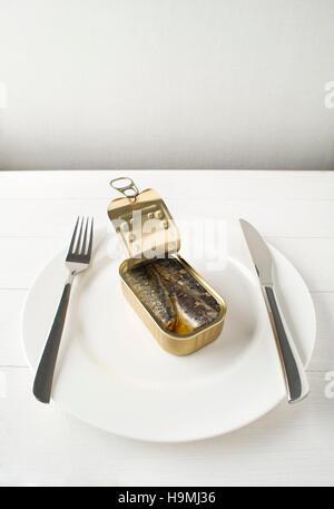 Conserves de sardines à l'huile d'olive sur l'analyse conceptuelle de la plaque blanche Banque D'Images