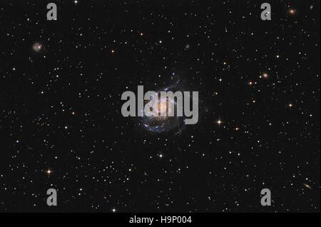 La Galaxie pinwheel (M101) dans la constellation de la Grande Ourse Banque D'Images