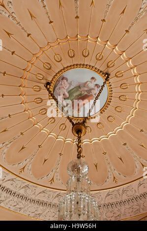 Détail du plafond conçu par George Steuart dans La Sultana Chambre à Attingham Park, Shropshire. La cocarde est Banque D'Images