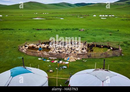 La Mongolie, province Arkhangai, camp nomade yourte dans la steppe Banque D'Images
