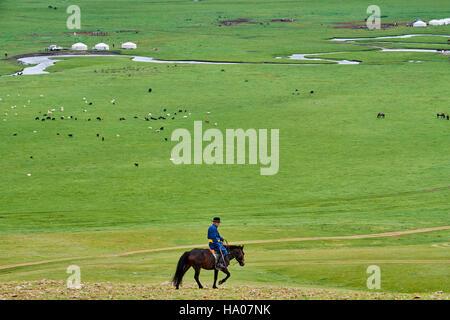 La Mongolie, province Arkhangai, camp nomade yourte dans la steppe mongole, cavalier Banque D'Images