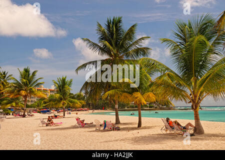 Dover Beach en face de Souther Palms Hotel, St Lawrence Gap, Barbade, Caraïbes. Banque D'Images