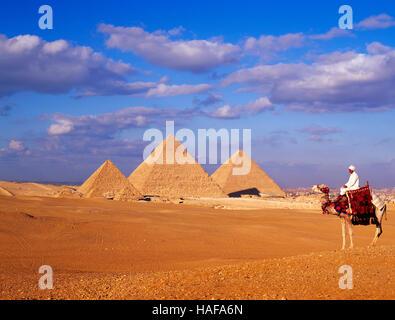 Pyramides et Camel rider, Gizeh, Le Caire, Égypte. Banque D'Images