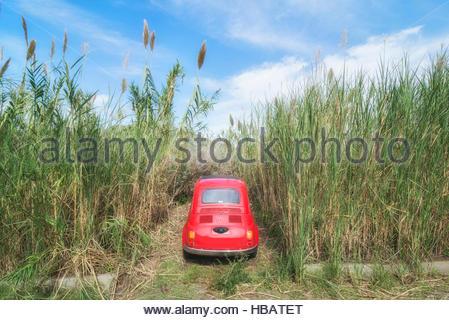 Voiture garée parmi les herbes hautes, Lipari, iles Eoliennes, Sicile, Italie Banque D'Images
