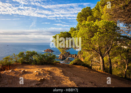 Haut de la falaise, vue sur la côte pittoresque de la Méditerranée - Costa Brava en Catalogne, Espagne Banque D'Images