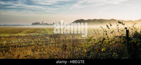 St Andrew Rushmere. England UK. La brume de la ferme des champs d'un matin glacial crée un paysage de l'atmosphère. Banque D'Images