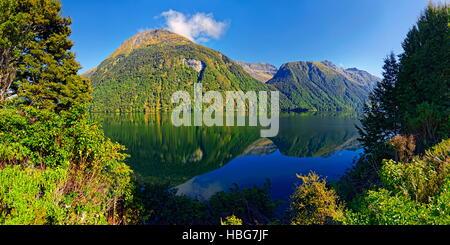 Reflet dans le lac Gunn, Milford Sound, Fiordland National Park, Te Anau, île du Sud, Nouvelle-Zélande Banque D'Images