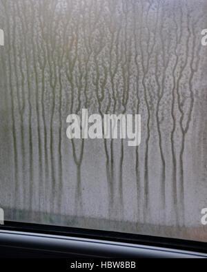 La condensation sur la fenêtre Banque D'Images