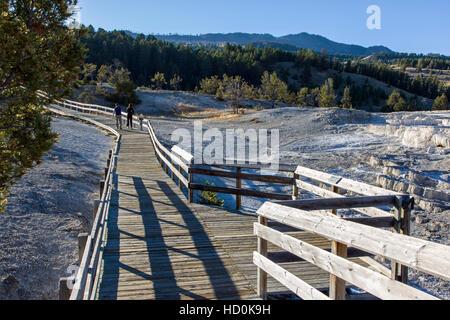 Les touristes marche sur promenade à Mammoth Hot Springs, Parc National de Yellowstone, Wyoming, USA; Banque D'Images