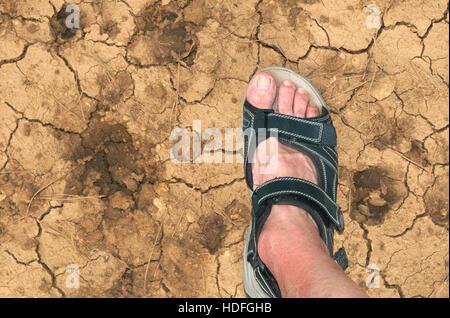 Le pied sur la terre craquelée séchées Banque D'Images