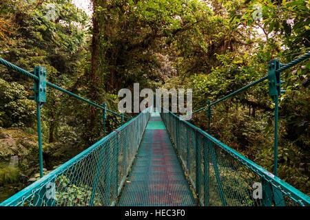 Pont suspendu sur le feuillage des arbres à Monteverde, Costa Rica, Amérique Centrale Banque D'Images