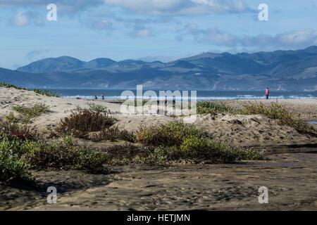 À la centrale vers le nord le long de la côte californienne de Pismo Beach sand dunes Banque D'Images
