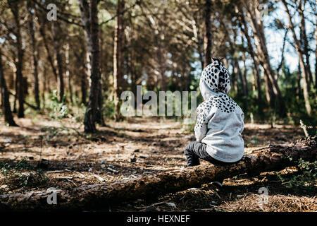 Vue arrière de little boy wearing Hooded Jacket assis sur le bois mort dans la forêt Banque D'Images