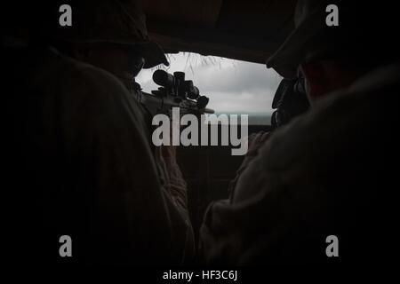 Les Marines américains attachés à Scout Sniper peloton, Compagnie d'Armes, 1er Bataillon, 3e Régiment de Marines, Banque D'Images