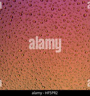Gouttes d'eau sur une surface avec un mettalic de rose dégradé orange et jaune Banque D'Images