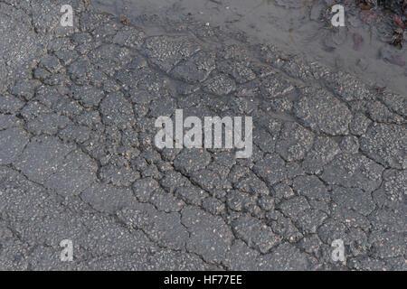 12.2005 / endommagé par le gel d'une surface goudronnée / rural country road in Cornwall, UK. Métaphore de la notion Banque D'Images