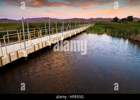 Swan Lake Nature Zone d'étude à Reno, au Nevada, au coucher du soleil. Étang et la promenade pour observer la faune. Banque D'Images