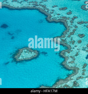 Au-dessus de la Grande Barrière de Corail, Queensland, Australie Banque D'Images
