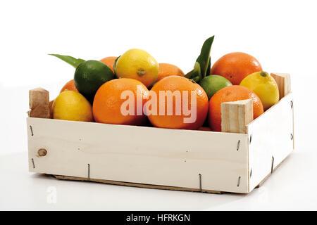Dans une caisse d'agrumes: oranges et citrons, limes Banque D'Images