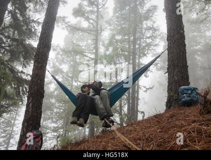 D'âge mûr de la randonnée, de détente dans l'hamac dans misty forêt de pins. Banque D'Images