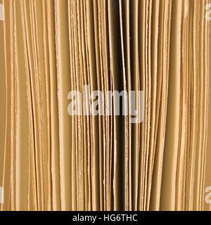 Ouvrir légèrement les pages d'un livre libre contexte sépia, grand studio macro shot verticale Banque D'Images