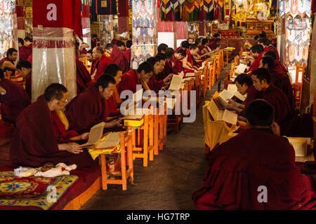 Lhassa, Tibet - l'avis de Drepung, le plus grand monastère du bouddhisme dans le monde. Banque D'Images