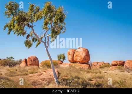 Devils Marbles, Territoire du Nord, Australie Banque D'Images