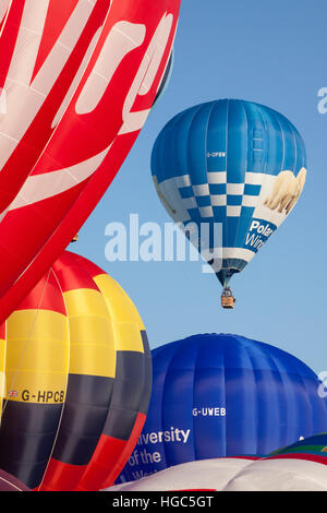 L'ours polaire Cameron Windows Hot Air Balloon à Bristol International Balloon Fiesta 2016 Banque D'Images