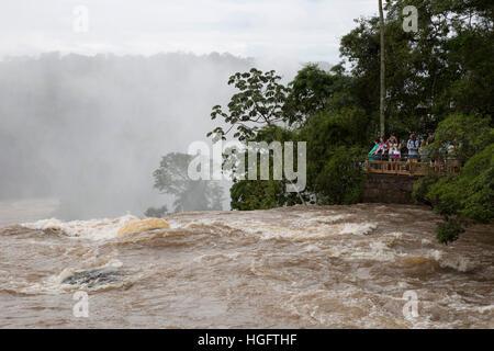 D'Iguazu, Iguazu National Park, province de Misiones, au nord-est, l'Argentine, l'Amérique du Sud Banque D'Images