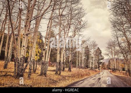 Tons couleur rétro automne route après la pluie.