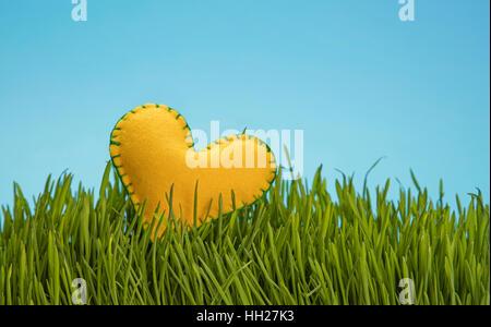 Un feutre jaune cousu d'artisanat dans la chaleur de l'herbe verte fraîche plus de ciel bleu clair, Close up, low Banque D'Images