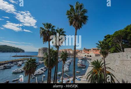 L'extérieur de l'ancien mur de la ville à la recherche à la Dubrovnik, Croatie port avec ses bateaux et de palmiers. Banque D'Images