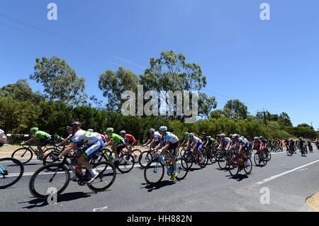 17 janvier 2017, Adelaide, Australie; Santos Tour Down Under; l'étape 1, *** à Lyndoch; vue générale des coureurs passant Banque D'Images