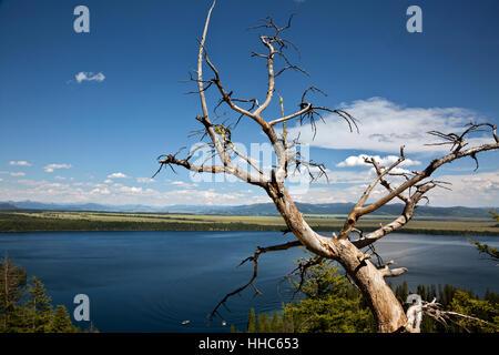 WY02060-00...WYOMING - Jenny Lake et le grand parc terre de Jackson Hole de Inspiration Point dans le Grand Teton National Park.