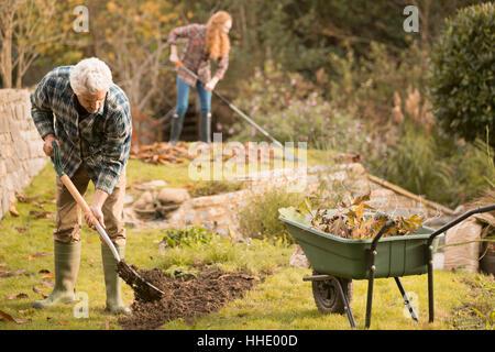 Couple gardening jardinage faire ramasser les feuilles d'automne Banque D'Images