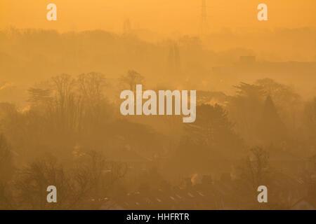 Wimbledon Londres, Royaume-Uni. 19 Jan, 2017. Wimbledon treescape baigné de soleil du matin brumeux que Londres Banque D'Images