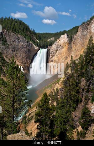 WY02098-00...WASHINGTON - Lower Falls dans le Grand Canyon de la Yellowstone River dans le Parc National de Yellowstone. Banque D'Images
