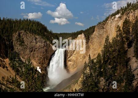 WY02099-00...WASHINGTON - Lower Falls dans le Grand Canyon de la Yellowstone River dans le Parc National de Yellowstone. Banque D'Images