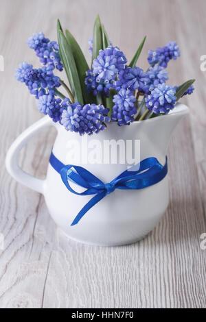 Gentle spring bouquet de muscari bleu fleurs dans un pot sur la table