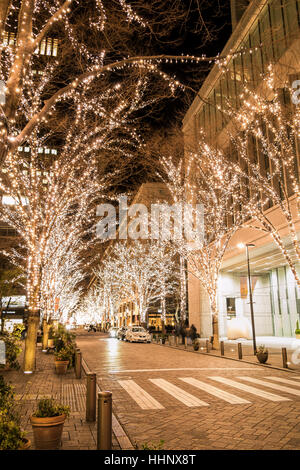 Illuminations à Marunouchi, Tokyo, Japon Banque D'Images