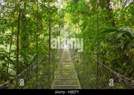 Pont suspendu au parc naturel de forêt tropicale au Costa Rica Banque D'Images