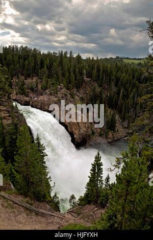 WY02148-00...WYOMING - Upper Falls dans le Grand Canyon de la Yellowstone River dans le Parc National de Yellowstone. Banque D'Images