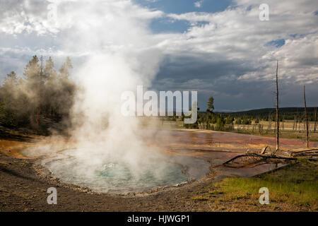 WY02190-00...WYOMING - Printemps Firehole Firehole sur dur dans le Parc National de Yellowstone. Banque D'Images