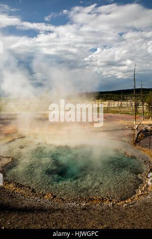 WY02191-00...WYOMING - Printemps Firehole Firehole sur dur dans le Parc National de Yellowstone. Banque D'Images