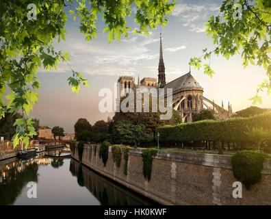 Notre Dame et parc sur la Seine à Paris, France Banque D'Images