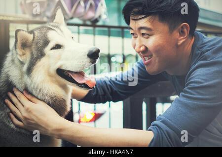 Propriétaire de chien mâle jeune asiatique de jouer et de toucher les animaux chien sibérien Husky heureux avec Banque D'Images