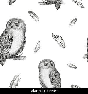 Dessin en noir et blanc d 39 un hibou banque d 39 images photo stock 31322956 alamy - Oiseau mouche dessin ...