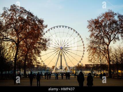 PARIS, FRANCE - CIRCA DÉCEMBRE 2016: La Grande Roue sur la place de la Concorde comme vu du Jardin des Tuileries. Banque D'Images